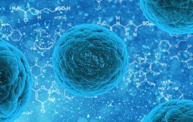 Ανοσοποιητικό κύτταρο εξοντώνει όλους τους καρκίνους-Εκκρεμούν οι...