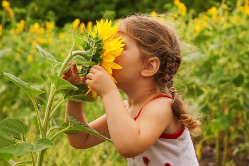 Η επαφή παιδιών με τη φύση οδηγεί ευκολότερα σε ψυχική ισορροπία στην ενήλικη ζωή