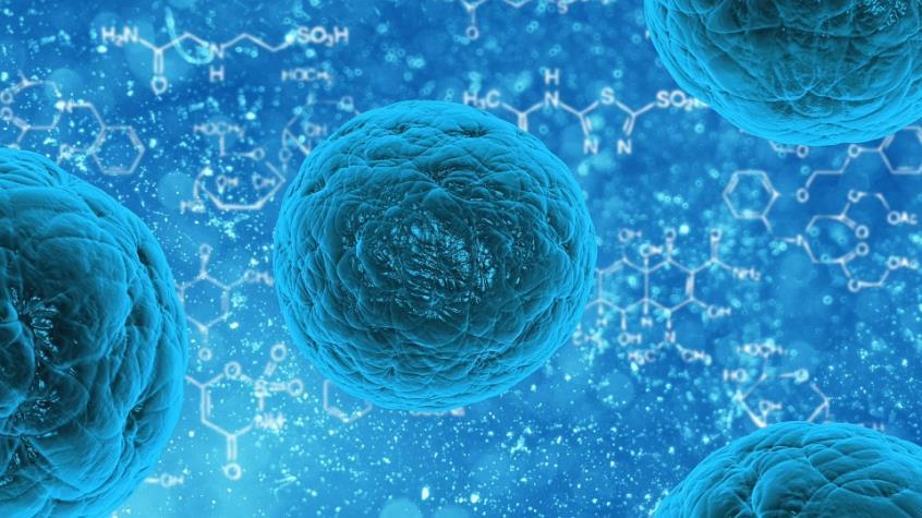 Ανοσοποιητικό κύτταρο εξοντώνει όλους τους καρκίνους-Εκκρεμούν οι κλινικές δοκιμές