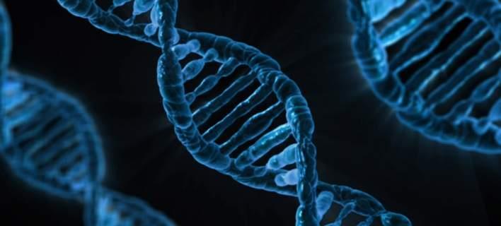 Ανακαλύφθηκαν γονίδια που συνδέονται με... την εξυπνάδα